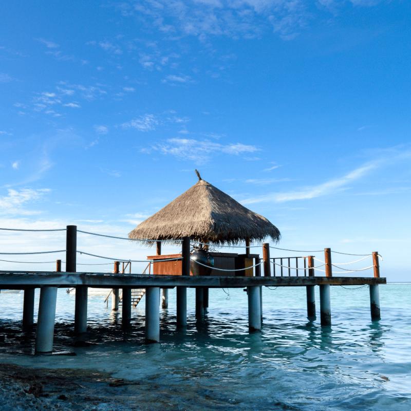 Beauty Of Solomon Island And Love